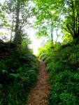 Path to Druim Ceit, Roe valley, Limavady