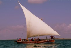 Arab dhow with lanteen sail